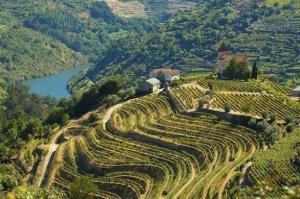 douro-river-cruise