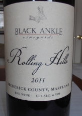 Black Ankle Crumblig Rock 2010