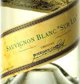 Savignon Blanc Sur Lie Carrau